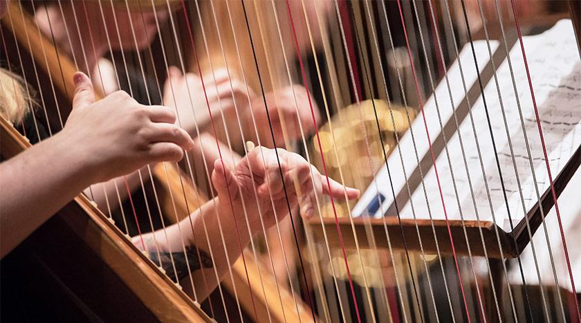 Harfa – zanimivosti in vse, kar morate vedeti